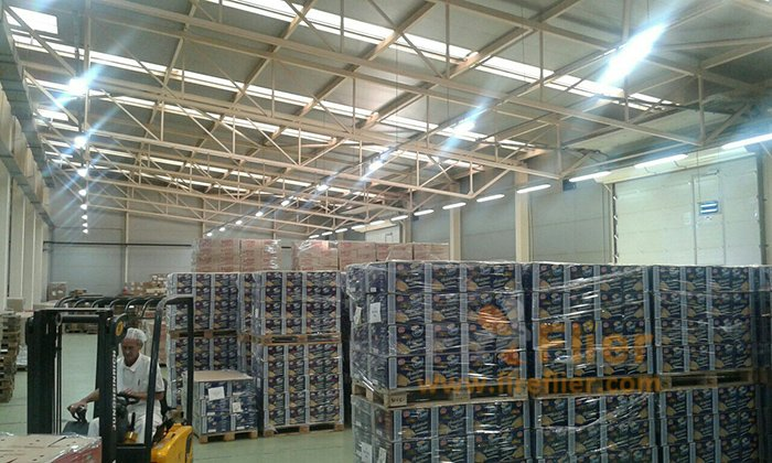 Linear LED High Bay Light Project