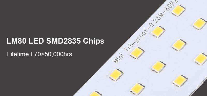 2835 LED Tri-Proof-Licht